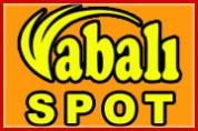 Abalı Spot – 2. El Eşya Pazarı