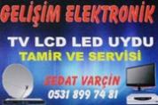Gelişim Elektronik