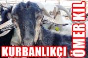 Fethiye Kurbanlıkçı Ömer KIL – Canlı Hayvan Alım Satım